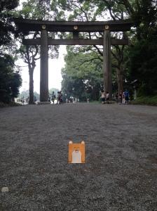 Yo, delante del portal del templo